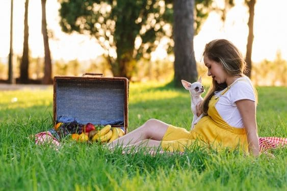 pictures of pregnant with dog